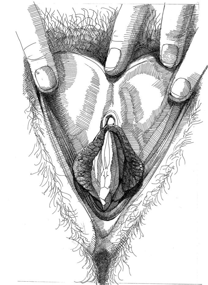 Vulva_12