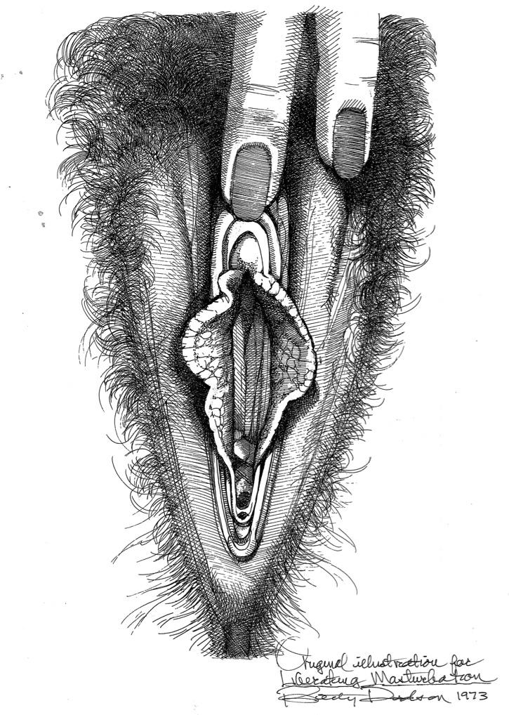 Vulva_13