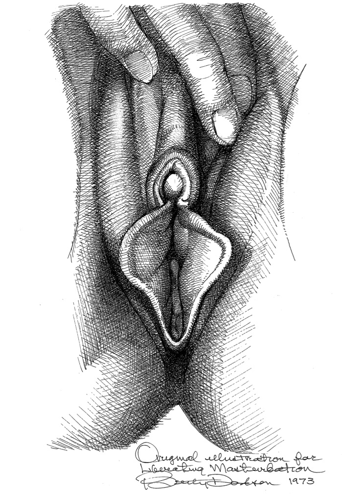 Vulva_15