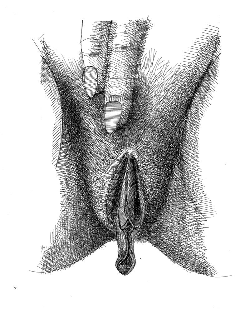 vulva_3